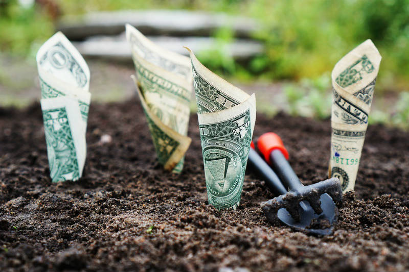 Would You Grow Through Sh*t to Build Prosperity?