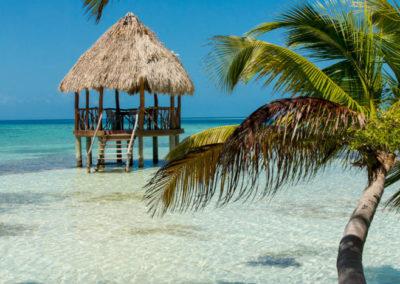 Island_Palapa MICHAEL SANTOS