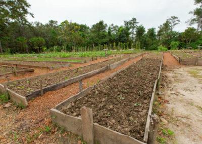 Organic_Gardens MICHAEL SANTOS